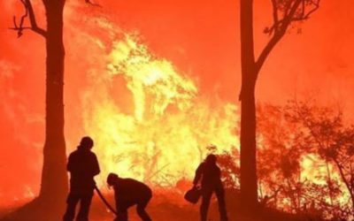 ATO and other financial support for those affected by the Bushfire Crisis